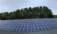 448 poly 250 WP zonnepanelen verdeeld over 2 staldaken + Hantumhuizen